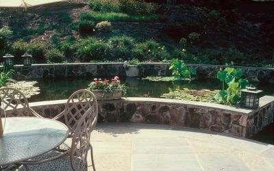 10 Landscape Design Tips from Frederick Law Olmsted